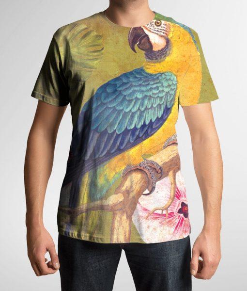 papagaio-3