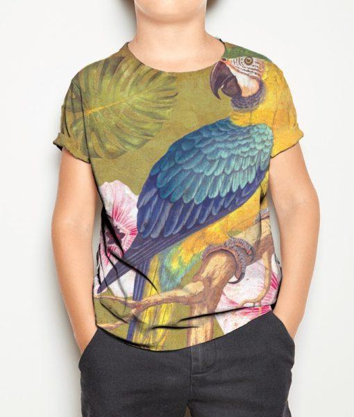 papagaio-7