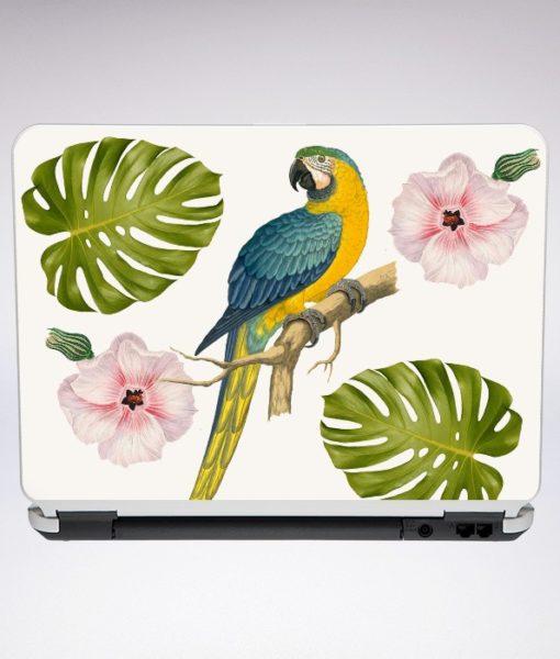 papagio-e-flor-rosa-18