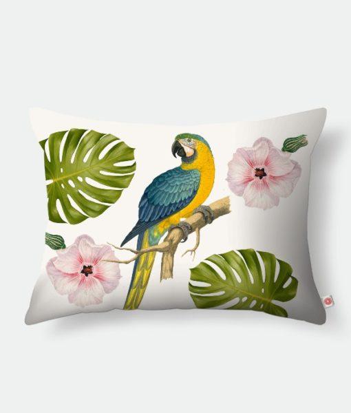 papagio-e-flor-rosa-20