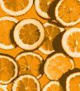 oranges-pop